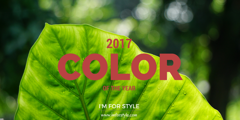 greenery, color of the year 2017, pantone, imforstyle, aanchal prabhakar jagga, color, 2017, colors for men, men colors, menstyle, menstyle blog, fashion, style